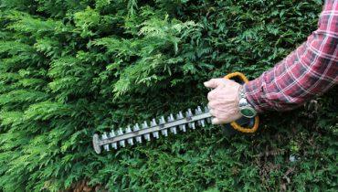 matériel de jardin, taille haie, pulvérisateur, débroussailleuse, souffleur